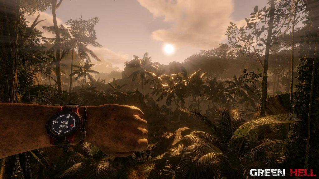 Green Hell: Schöne Lichteffekte zeigen den schönen Amazonas